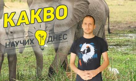 Нуждата от слонова кост и влиянието на хората върху природата